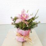 Centro Con Orquídea Rosa Hermosa Para Chica