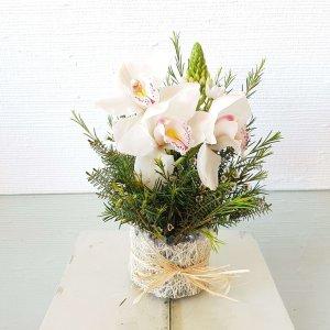 Centro De Besos De Madre Y Orquídeas Blancas Entrega Rápida