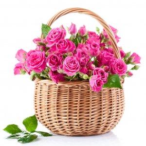 Cesta Con Rosas Bonitas Salamanca