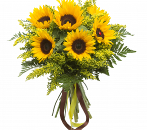 Floresteria Online Min